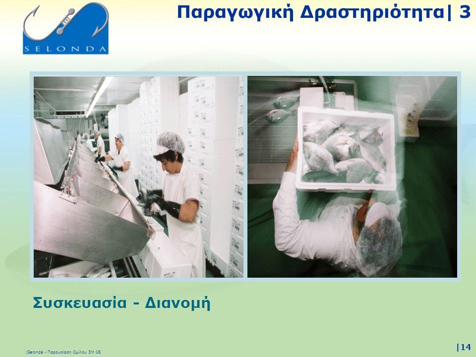 |Selonda - Παρουσίαση Ομίλου 3Μ 08 |14 Συσκευασία - Διανομή Παραγωγική Δραστηριότητα| 3