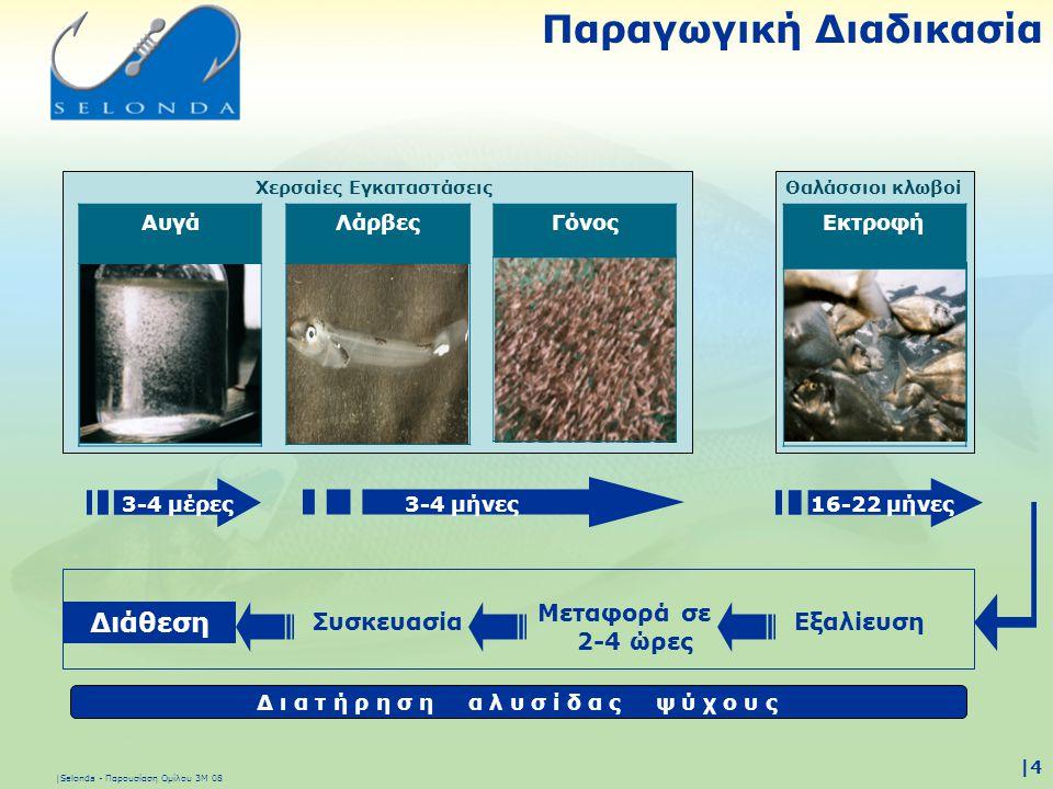 |Selonda - Παρουσίαση Ομίλου 3Μ 08 |4|4 Παραγωγική Διαδικασία Γόνος Εκτροφή Χερσαίες ΕγκαταστάσειςΘαλάσσιοι κλωβοί 3-4 μήνες16-22 μήνες3-4 μέρες Μεταφ