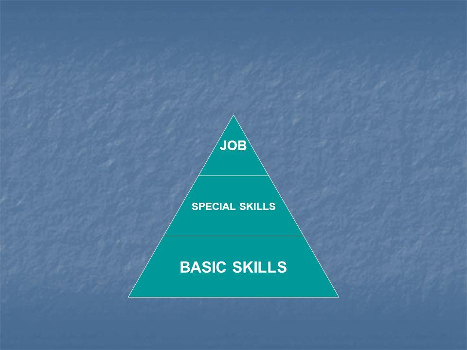 JOB SPECIAL SKILLS BASIC SKILLS