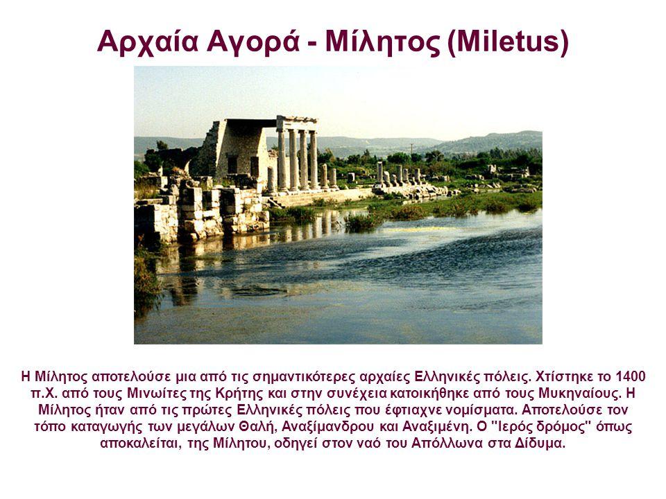 Αρχαία Αγορά - Μίλητος (Miletus) H Μίλητος αποτελούσε μια από τις σημαντικότερες αρχαίες Ελληνικές πόλεις. Χτίστηκε το 1400 π.Χ. από τους Μινωίτες της