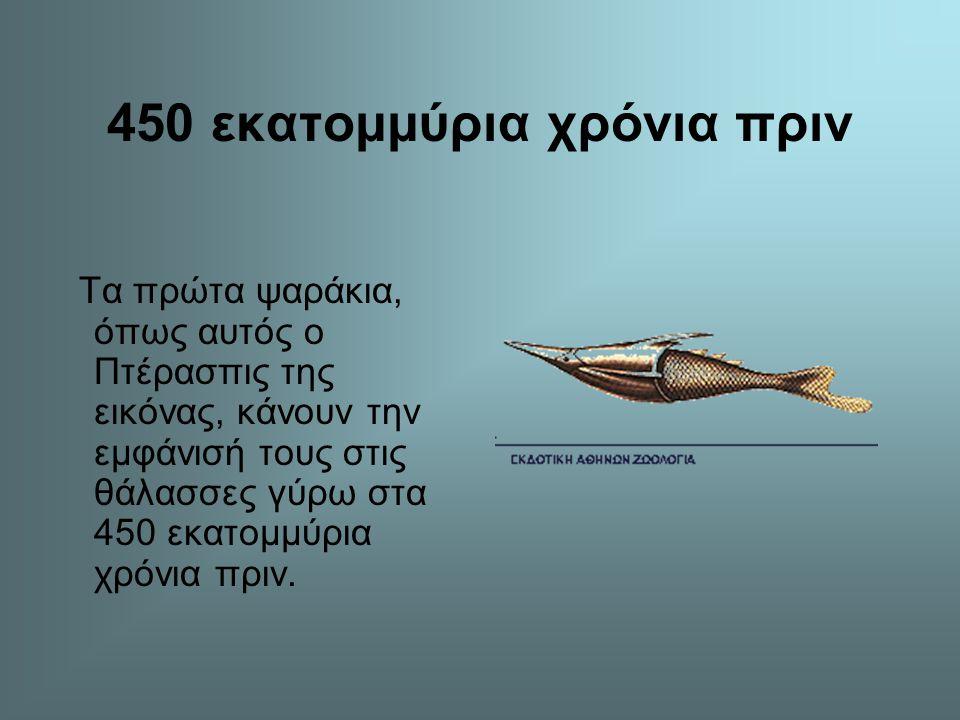 600 εκατομμύρια χρόνια πριν Γύρω στα 600 εκατομμύρια χρόνια πριν εμφανίζονται τα πρώτα ασπόνδυλα. Διάφορα είδη μεδουσών κολυμπούνε στις προϊστορικές θ