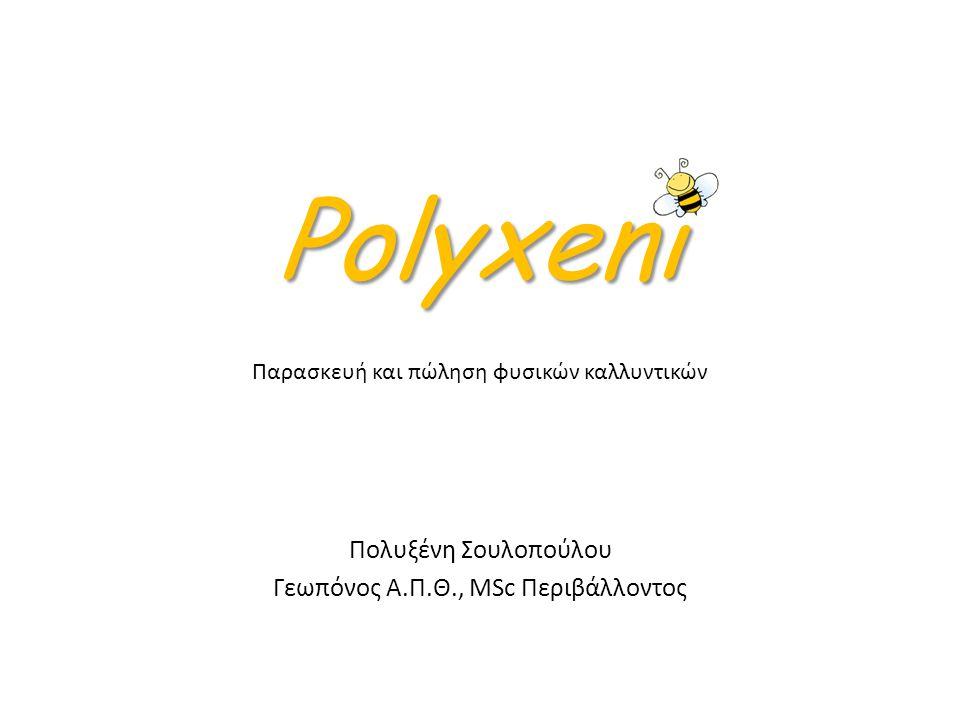 Polyxeni Φ.Α.Φ Α.Ε Φ.Κ Στόχος: Παραγωγή φυσικών καλλυντικών Ανάγκη: Κενό αγοράς – ζήτηση Φ.Κ από εξειδικευμένες μικρές επιχειρήσεις Ανταγ.