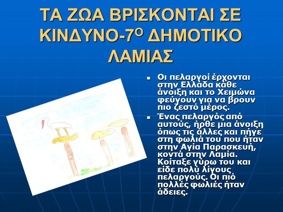 ΤΑ ΖΩΑ ΒΡΙΣΚΟΝΤΑΙ ΣΕ ΚΙΝΔΥΝΟ-7 Ο ΔΗΜΟΤΙΚΟ ΛΑΜΙΑΣ  Οι πελαργοί έρχονται στην Ελλάδα κάθε άνοιξη και το Χειμώνα φεύγουν για να βρουν πιο ζεστό μέρος. 
