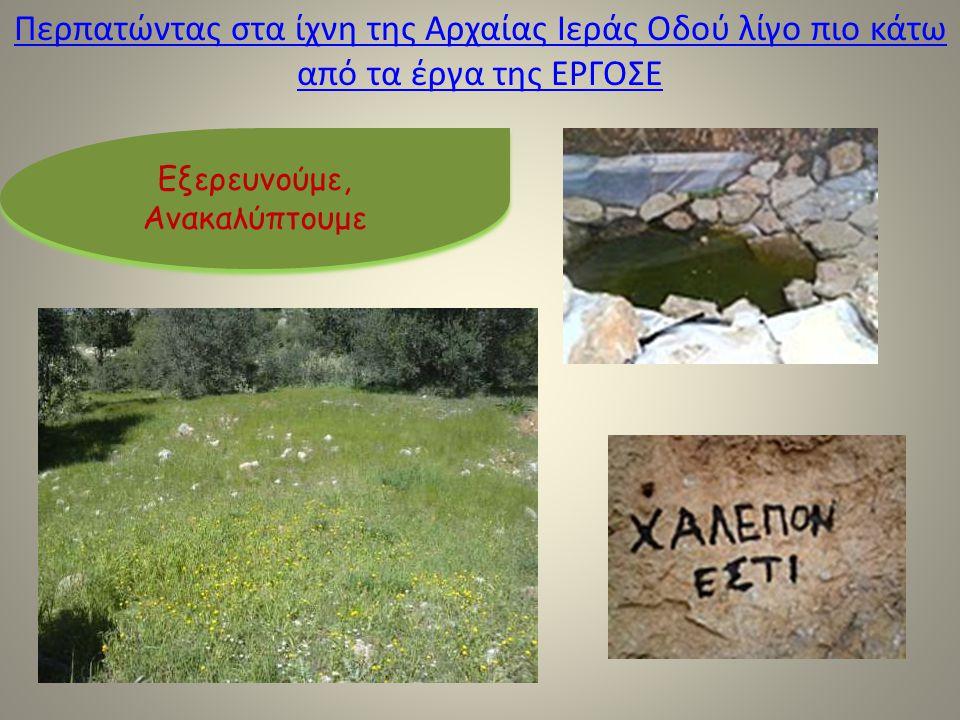 Περπατώντας στα ίχνη της Αρχαίας Ιεράς Οδού λίγο πιο κάτω από τα έργα της ΕΡΓΟΣΕ Εξερευνούμε, Ανακαλύπτουμε