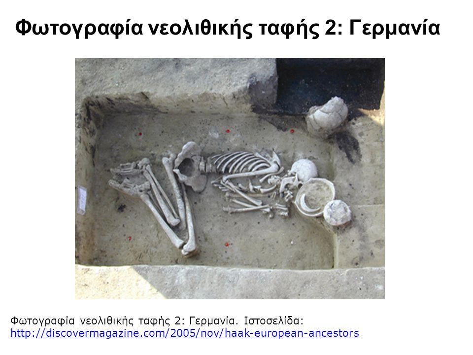 Φωτογραφία νεολιθικής ταφής 2: Γερμανία Φωτογραφία νεολιθικής ταφής 2: Γερμανία. Ιστοσελίδα: http://discovermagazine.com/2005/nov/haak-european-ancest
