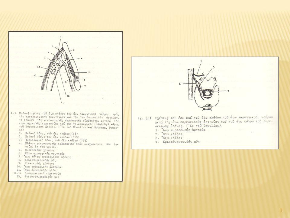 Ενδιαφέροντα ανατομικά στοιχεία 2.Παλίνδρομο λαρυγγικό νεύρο Α.
