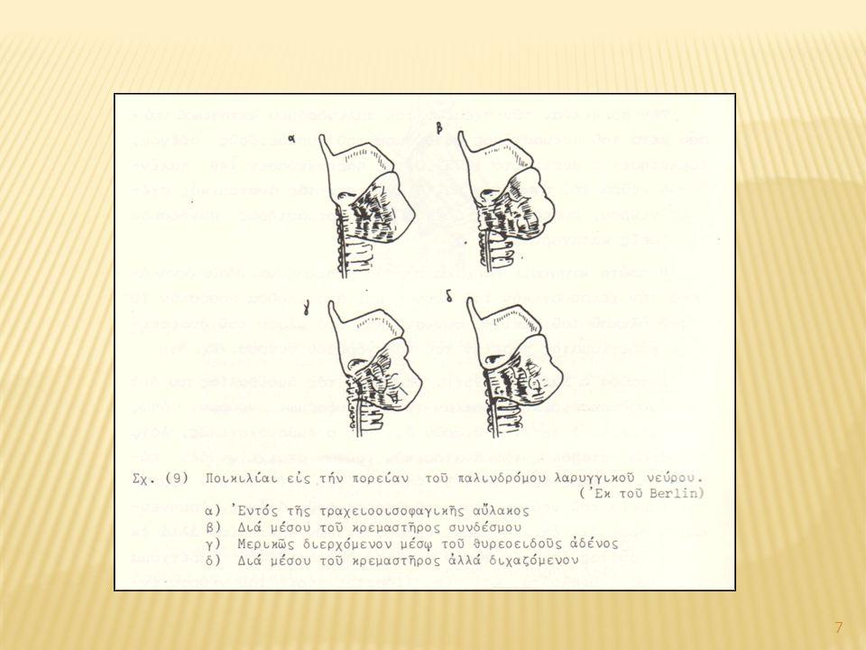 Παραθυρεοειδείς αδένες Συνήθεις θέσεις κατώτερων: Επί των κάτω πόλων παρατραχειακά έμπροσθεν παλίνδρομου λαρυγγικού νεύρου Συνήθεις θέσεις ανώτερων: Όρια άνω-μέσου τριτημορίου του λοβού σε ακτίνα 1 εκ από τη συμβολή της κ.θ.α.