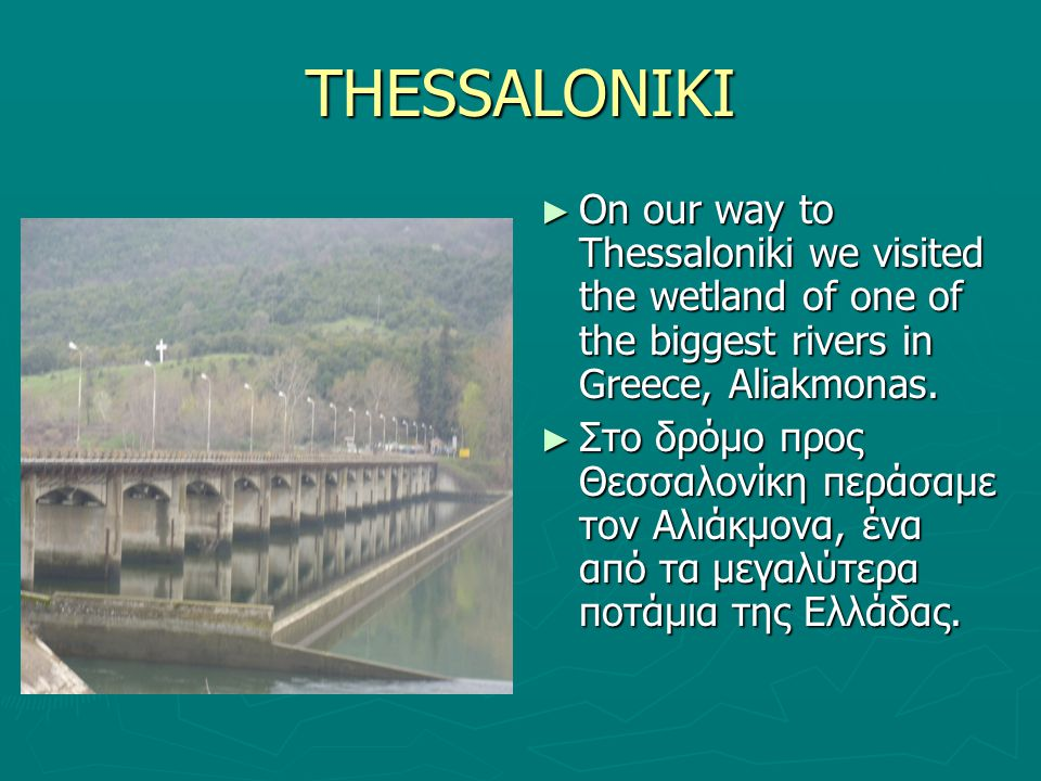 THESSALONIKI ► On our way to Thessaloniki we visited the wetland of one of the biggest rivers in Greece, Aliakmonas.