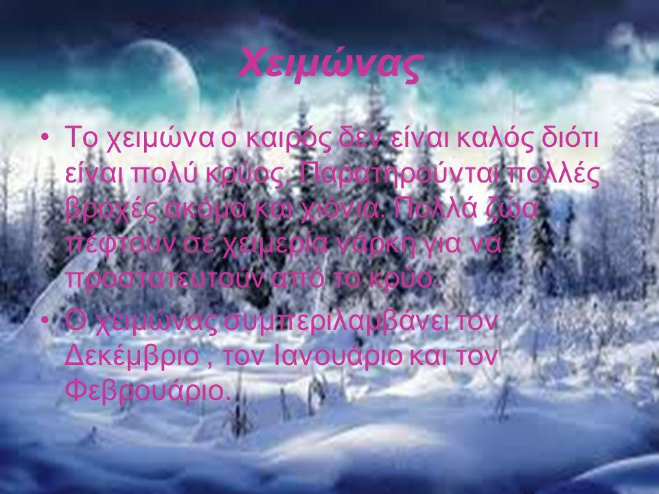 Χειμώνας •Το χειμώνα ο καιρός δεν είναι καλός διότι είναι πολύ κρύος. Παρατηρούνται πολλές βροχές ακόμα και χιόνια. Πολλά ζώα πέφτουν σε χειμερία νάρκ