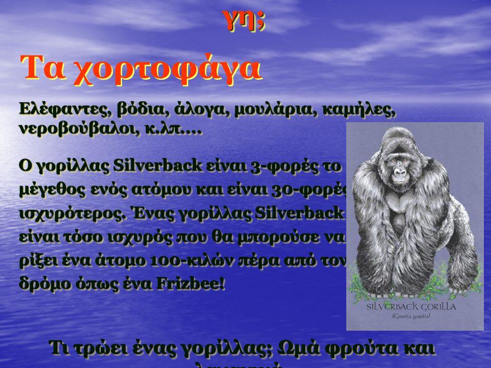 Ποιά είναι τα ισχυρότερα ζώα στη γη; Ελέφαντες, βόδια, άλογα, μουλάρια, καμήλες, νεροβούβαλοι, κ.λπ....