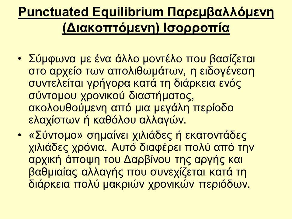 Punctuated Equilibrium Παρεμβαλλόμενη (Διακοπτόμενη) Ισορροπία •Σύμφωνα με ένα άλλο μοντέλο που βασίζεται στο αρχείο των απολιθωμάτων, η ειδογένεση συ