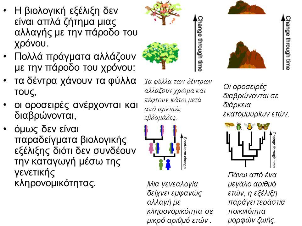 •Η βιολογική εξέλιξη δεν είναι απλά ζήτημα μιας αλλαγής με την πάροδο του χρόνου. •Πολλά πράγματα αλλάζουν με την πάροδο του χρόνου: •τα δέντρα χάνουν