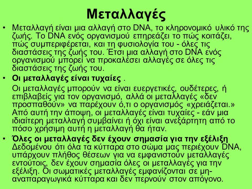 Μεταλλαγές •Μεταλλαγή είναι μια αλλαγή στο DNA, το κληρονομικό υλικό της ζωής. Το DNA ενός οργανισμού επηρεάζει το πώς κοιτάζει, πώς συμπεριφέρεται, κ
