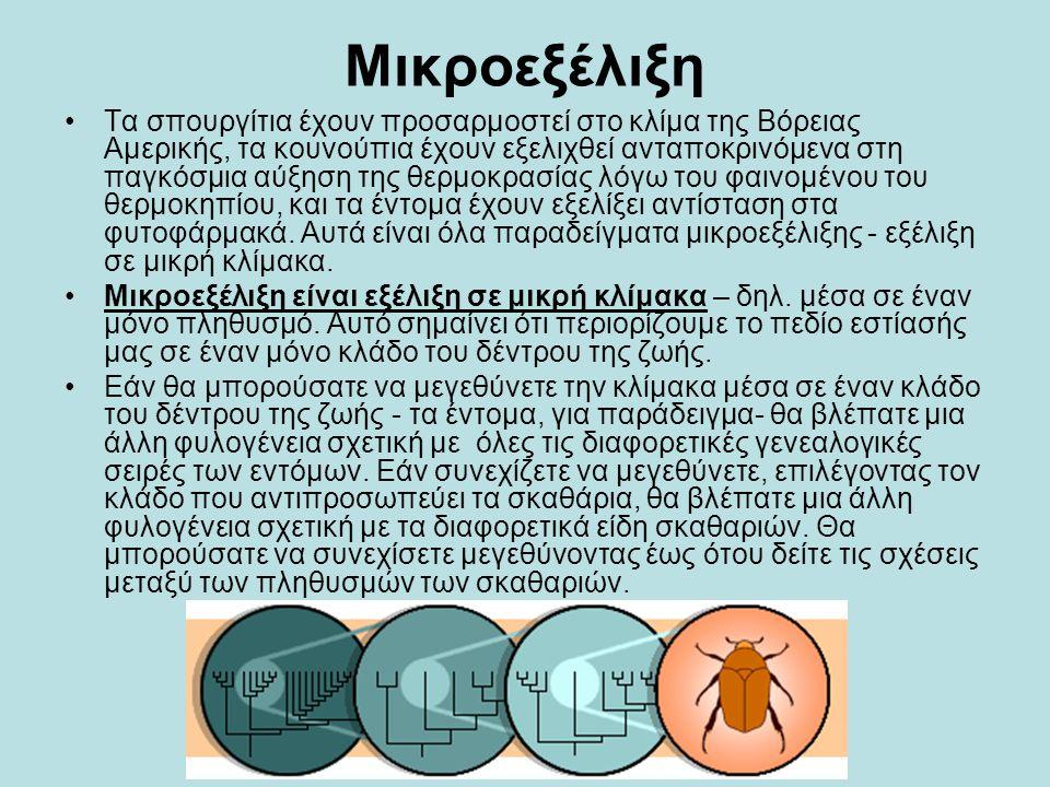 Μικροεξέλιξη •Τα σπουργίτια έχουν προσαρμοστεί στο κλίμα της Βόρειας Αμερικής, τα κουνούπια έχουν εξελιχθεί ανταποκρινόμενα στη παγκόσμια αύξηση της θ