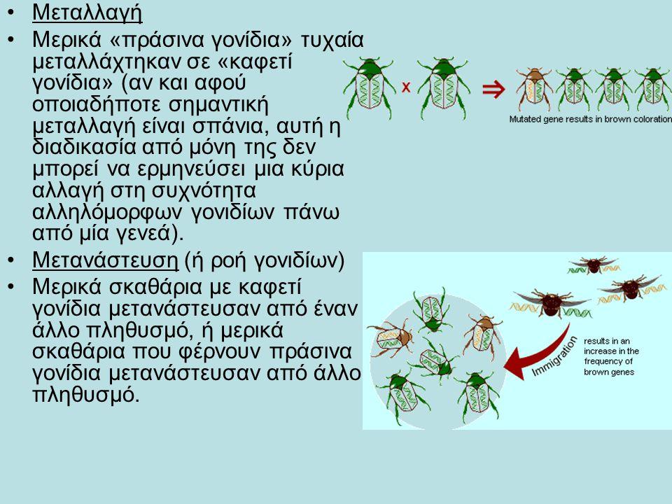 •Μεταλλαγή •Μερικά «πράσινα γονίδια» τυχαία μεταλλάχτηκαν σε «καφετί γονίδια» (αν και αφού οποιαδήποτε σημαντική μεταλλαγή είναι σπάνια, αυτή η διαδικ