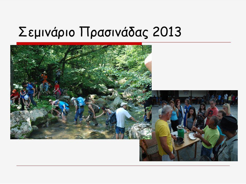 Σεμινάριο Πρασινάδας 2013
