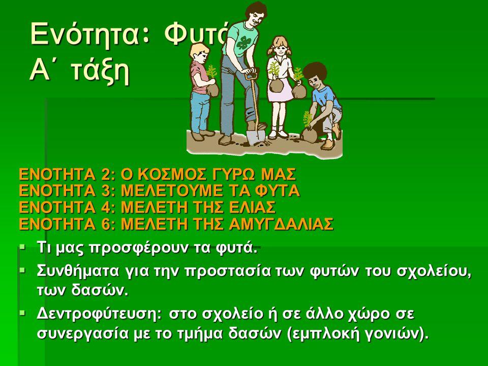 Ενότητα : Φυτά Α΄ τάξη ΕΝΟΤΗΤΑ 2: Ο ΚΟΣΜΟΣ ΓΥΡΩ ΜΑΣ ΕΝΟΤΗΤΑ 3: ΜΕΛΕΤΟΥΜΕ ΤΑ ΦΥΤΑ ΕΝΟΤΗΤΑ 4: ΜΕΛΕΤΗ ΤΗΣ ΕΛΙΑΣ ΕΝΟΤΗΤΑ 6: ΜΕΛΕΤΗ ΤΗΣ ΑΜΥΓΔΑΛΙΑΣ  Τι μας