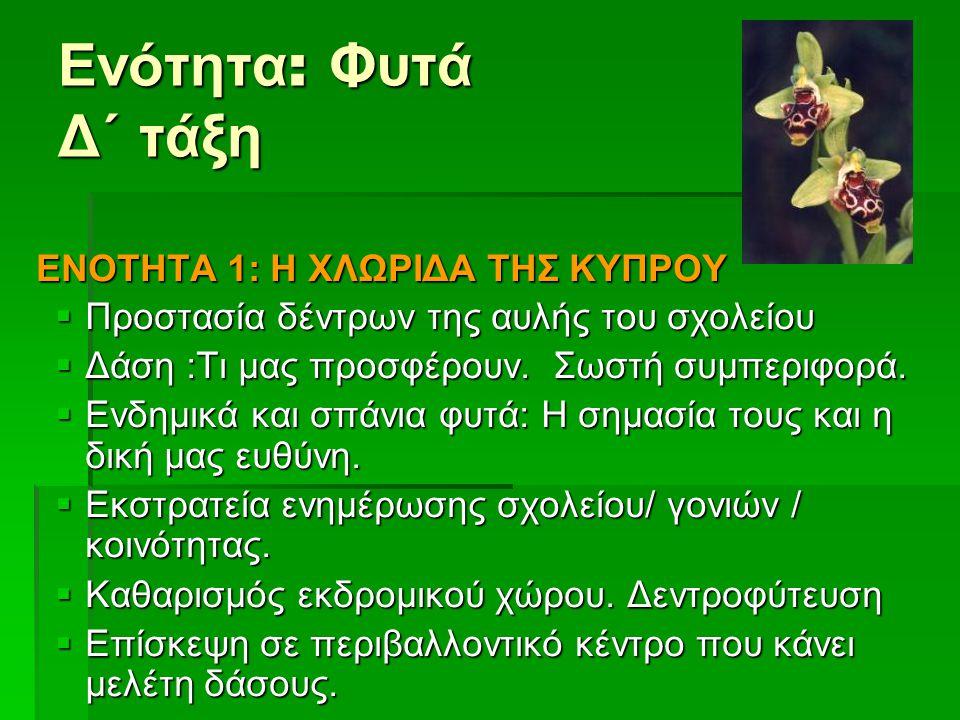 Ενότητα : Φυτά Δ΄ τάξη ΕΝΟΤΗΤΑ 1: Η ΧΛΩΡΙΔΑ ΤΗΣ ΚΥΠΡΟΥ  Προστασία δέντρων της αυλής του σχολείου  Δάση :Τι μας προσφέρουν. Σωστή συμπεριφορά.  Ενδη