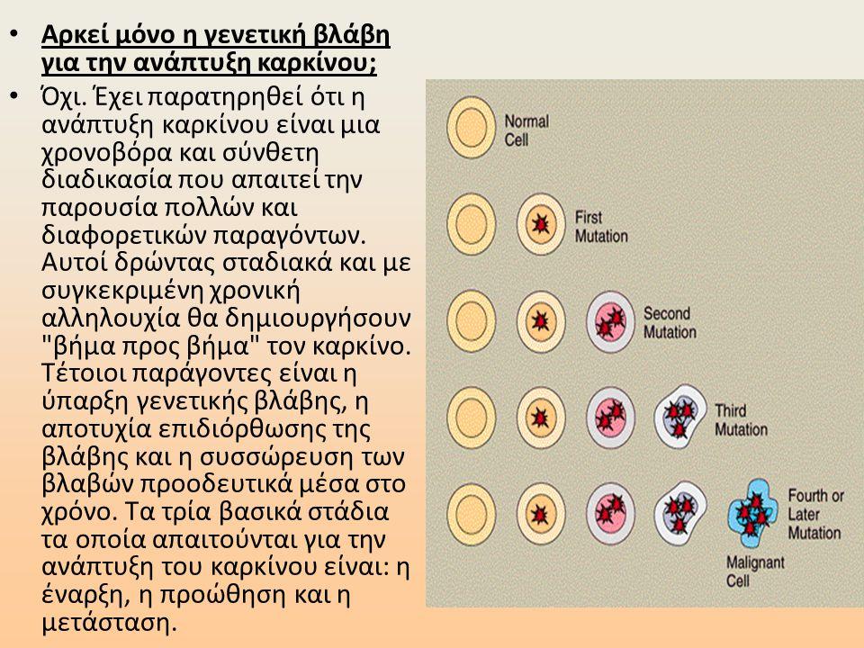 • Αρκεί μόνο η γενετική βλάβη για την ανάπτυξη καρκίνου; • Όχι. Έχει παρατηρηθεί ότι η ανάπτυξη καρκίνου είναι μια χρονοβόρα και σύνθετη διαδικασία πο