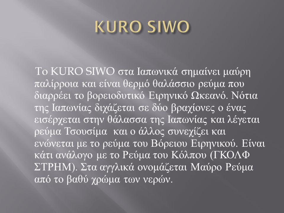 To KURO SIWO στα Ιαπωνικά σημαίνει μαύρη παλίρροια και είναι θερμό θαλάσσιο ρεύμα που διαρρέει το βορειοδυτικό Ειρηνικό Ωκεανό. Νότια της Ιαπωνίας διχ