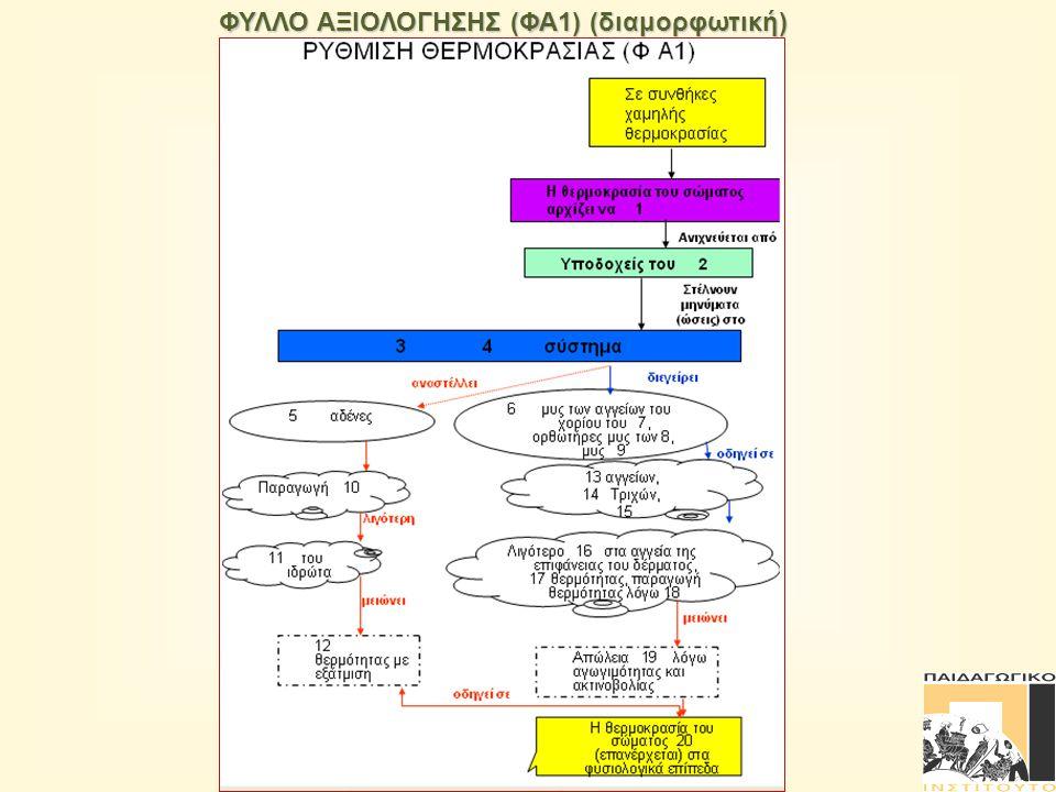 ΦΥΛΛΟ ΑΞΙΟΛΟΓΗΣΗΣ (ΦΑ1) (διαμορφωτική)