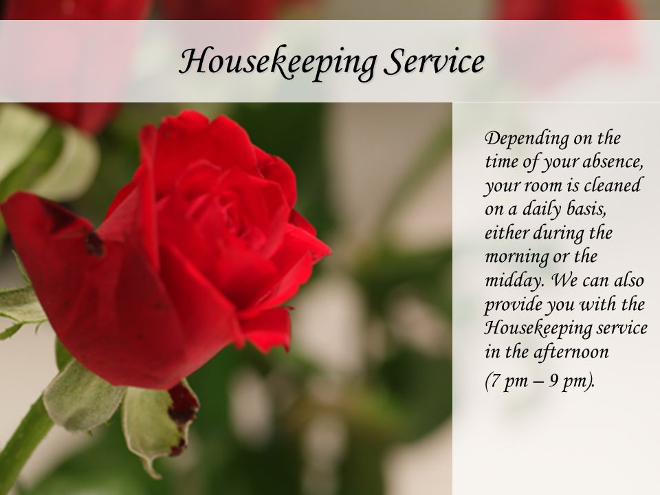 Housekeeping Service Depending on the time of your absence, your room is cleaned on a daily basis, either during the morning or the midday. We can als
