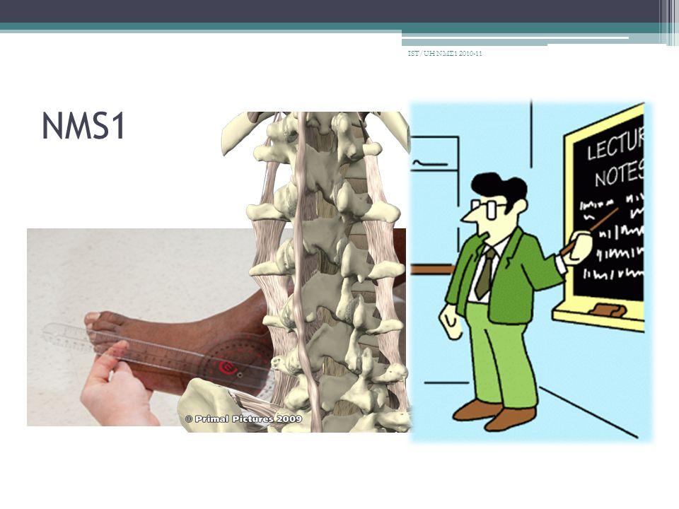 Οστά • Η σχολή μπορεί να σας δανείσει οστά για 10 μέρες IST/UH ΝΜΣ1 2010-11