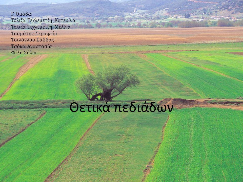 Τα θετικά στοιχεία των πεδιάδων είναι:  Έχουν μεγάλες εκτάσεις για τις καλλιέργειες και την ανάπτυξη των οικισμών.