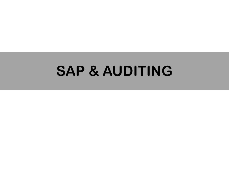 SAP & AUDITING