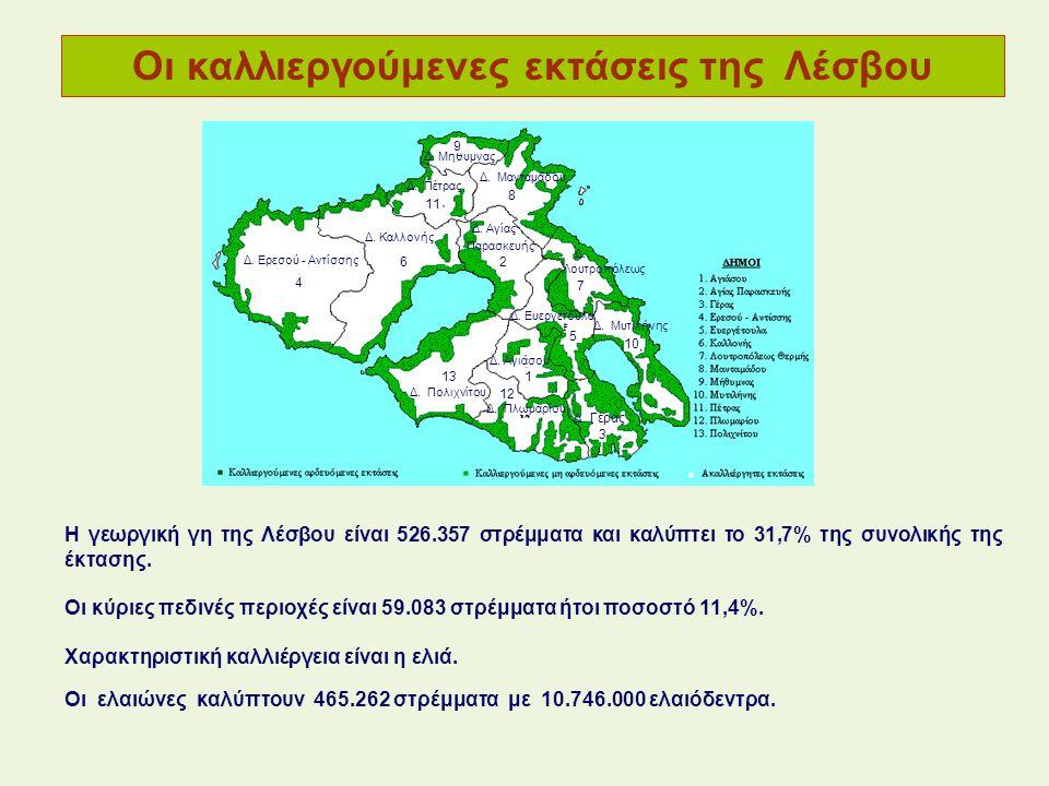 Οι καλλιεργούμενες εκτάσεις της Λέσβου Η γεωργική γη της Λέσβου είναι 526.357 στρέμματα και καλύπτει το 31,7% της συνολικής της έκτασης. Οι κύριες πεδ