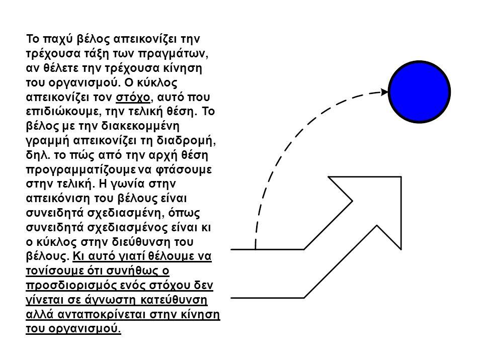 Το παχύ βέλος απεικονίζει την τρέχουσα τάξη των πραγμάτων, αν θέλετε την τρέχουσα κίνηση του οργανισμού.
