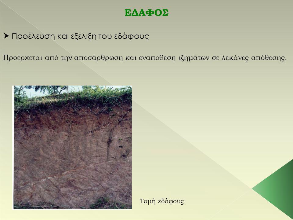ΕΔΑΦΟΣ  Προέλευση και εξέλιξη του εδάφους Προέρχεται από την αποσάρθρωση και εναποθεση ιζημάτων σε λεκάνες απόθεσης. Τομή εδάφους