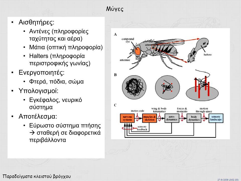 27/9/2009 13:02 (00) Παραδείγματα κλειστού βρόγχου Μύγες