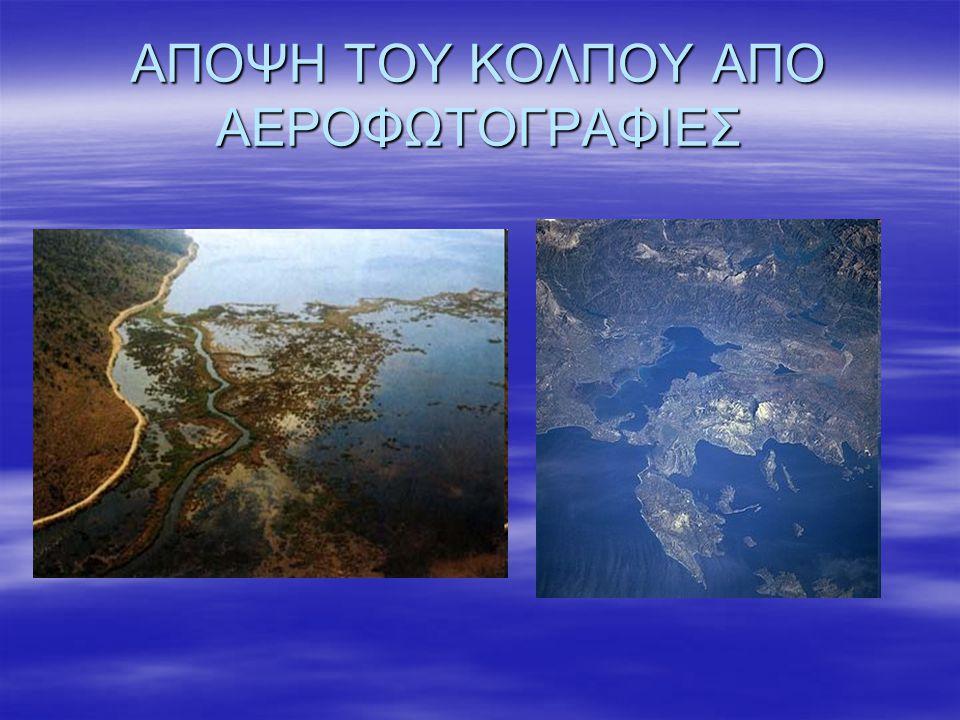 Ο ΝΟΜΟΣ ΠΡΕΒΕΖΑΣ  Ο Αμβρακικός κόλπος είναι ένας από τους μεγαλύτερους κλειστούς κόλπους της Ελλάδας.