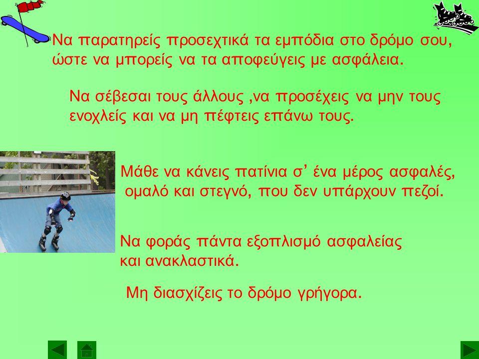 Γλυκερία Κωλέττη Κωνσταντίνος Σέμ π ος Λευτέρης Κατραντζής Η ομάδα μας ασχολήθηκε με τα skates και τα πατίνια.
