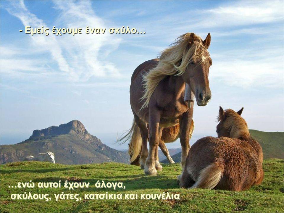 - Εμείς έχουμε έναν σκύλο… …ενώ αυτοί έχουν σκύλους, γάτες, άλογα, κατσίκες και κουνέλια - Εμείς έχουμε έναν σκύλο… …ενώ αυτοί έχουν άλογα, σκύλους, γ