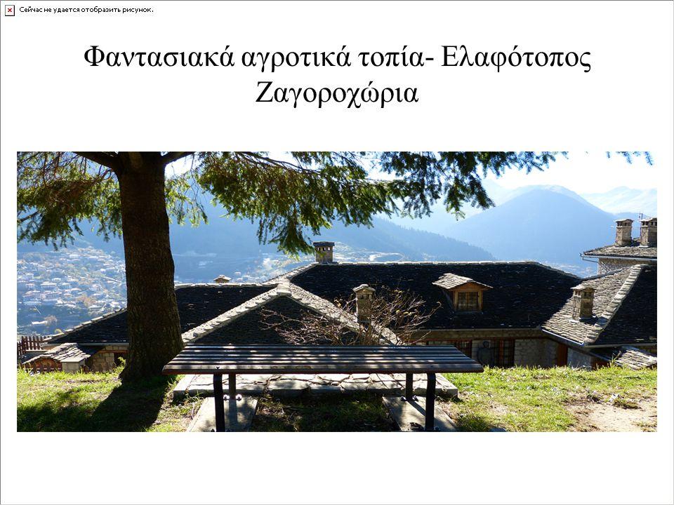 Φαντασιακά αγροτικά τοπία- Ελαφότοπος Ζαγοροχώρια