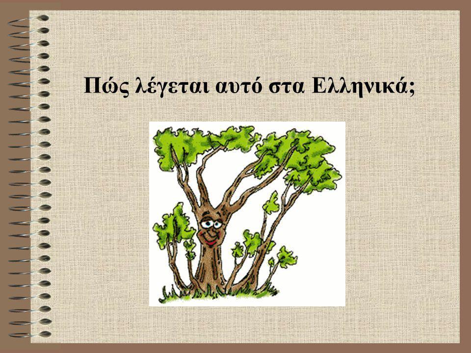 Πώς λέγεται αυτό στα Ελληνικά