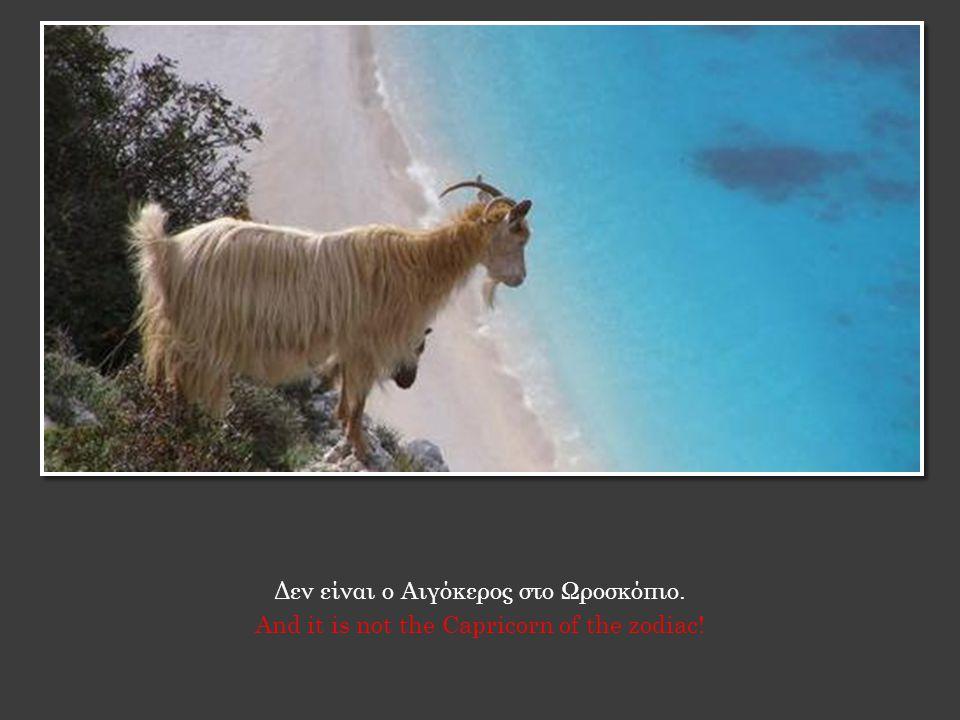 Δεν είναι ο Αιγόκερος στο Ωροσκόπιο. And it is not the Capricorn of the zodiac!