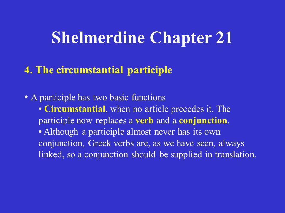 Shelmerdine Chapter 21 4.