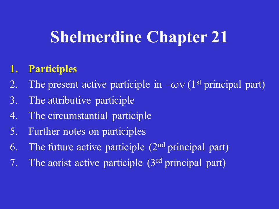 Shelmerdine Chapter 21 Verb person number tense mood voice Adjective number gender case Participle number gender case tense mood voice