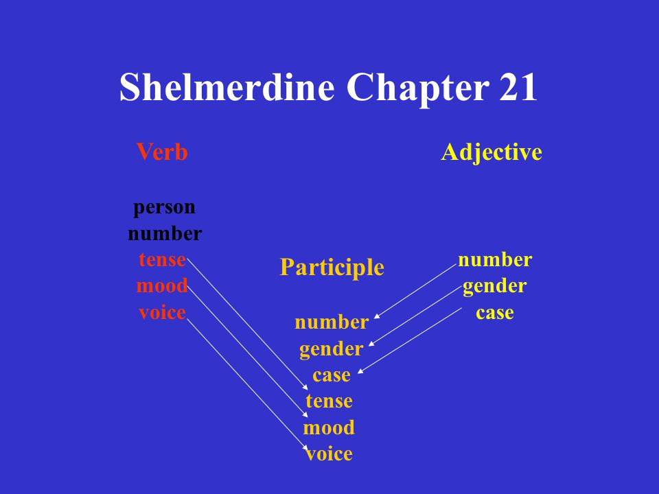 Shelmerdine Chapter 21 PARTICIPLE verb stem + adjective ending tense of verb voice of verb meaning of verb number of subject gender of subject case of subject mood = participle
