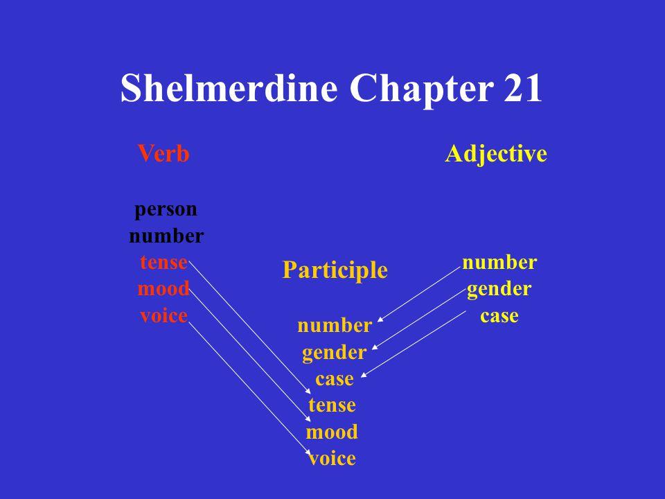 Shelmerdine Chapter 21 6.