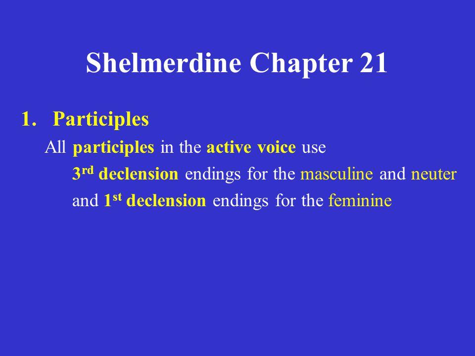 Shelmerdine Chapter 21 5.