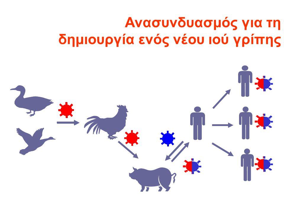 Ανασυνδυασμός για τη δημιουργία ενός νέου ιού γρίπης
