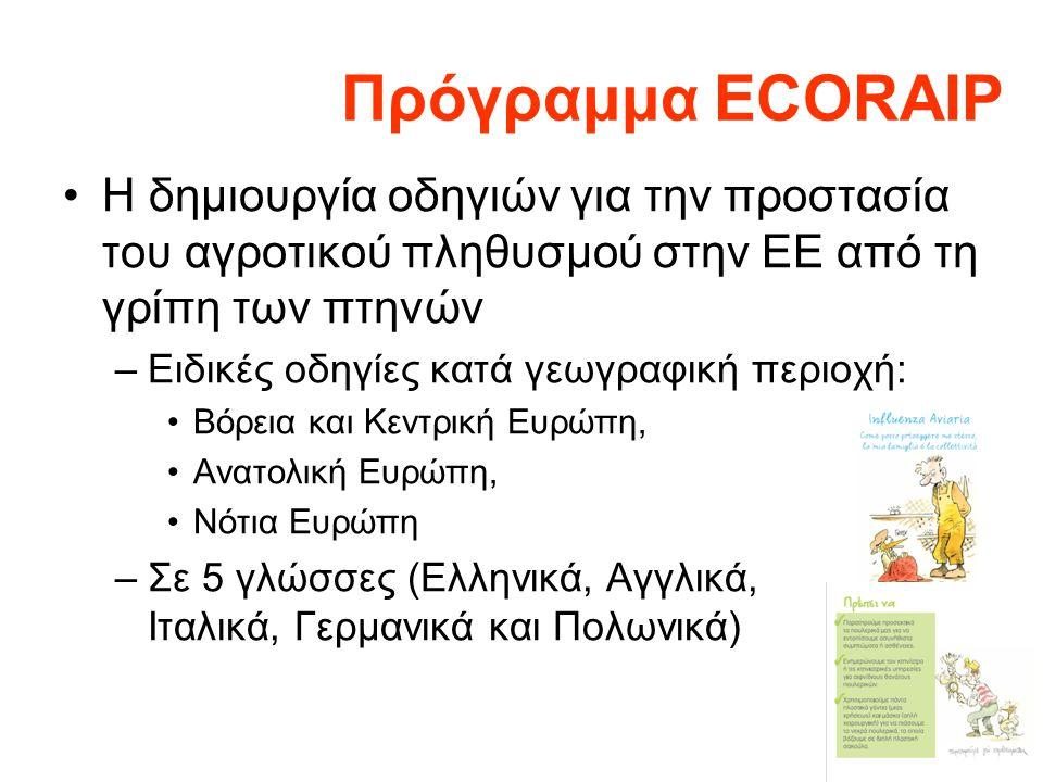 Πρόγραμμα ECORAIP •Η δημιουργία οδηγιών για την προστασία του αγροτικού πληθυσμού στην ΕΕ από τη γρίπη των πτηνών –Ειδικές οδηγίες κατά γεωγραφική περιοχή: •Βόρεια και Κεντρική Ευρώπη, •Ανατολική Ευρώπη, •Νότια Ευρώπη –Σε 5 γλώσσες (Ελληνικά, Αγγλικά, Ιταλικά, Γερμανικά και Πολωνικά)