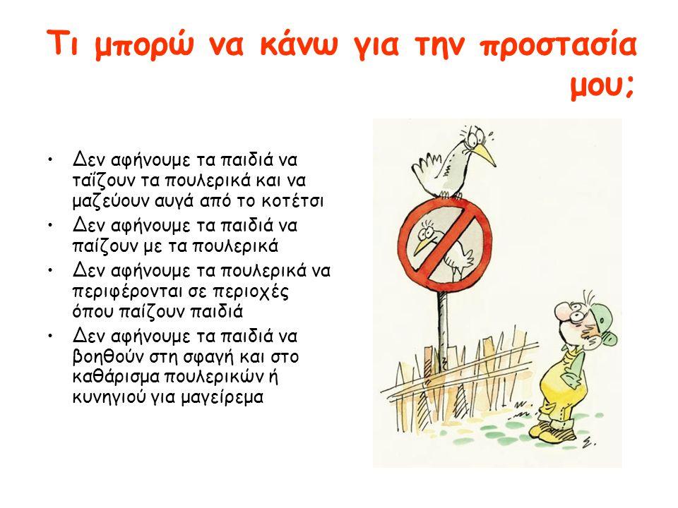 Τι μπορώ να κάνω για την προστασία μου; •Δεν αφήνουμε τα παιδιά να ταΐζουν τα πουλερικά και να μαζεύουν αυγά από το κοτέτσι •Δεν αφήνουμε τα παιδιά να παίζουν με τα πουλερικά •Δεν αφήνουμε τα πουλερικά να περιφέρονται σε περιοχές όπου παίζουν παιδιά •Δεν αφήνουμε τα παιδιά να βοηθούν στη σφαγή και στο καθάρισμα πουλερικών ή κυνηγιού για μαγείρεμα