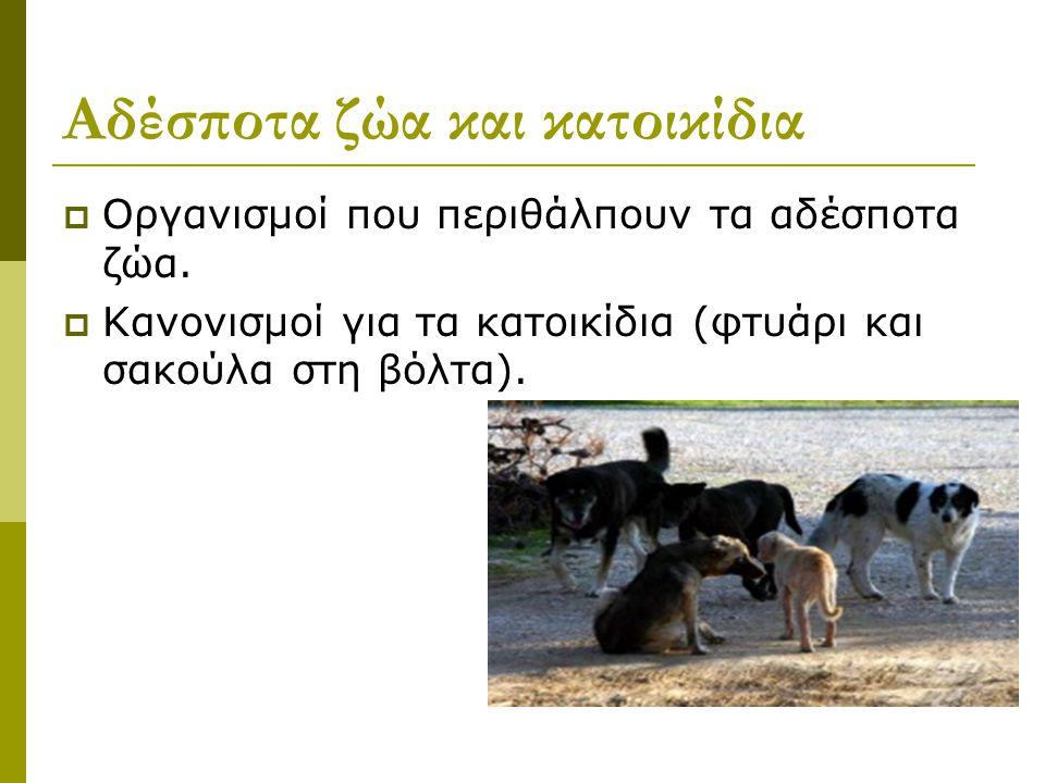 Αδέσποτα ζώα και κατοικίδια  Οργανισμοί που περιθάλπουν τα αδέσποτα ζώα.
