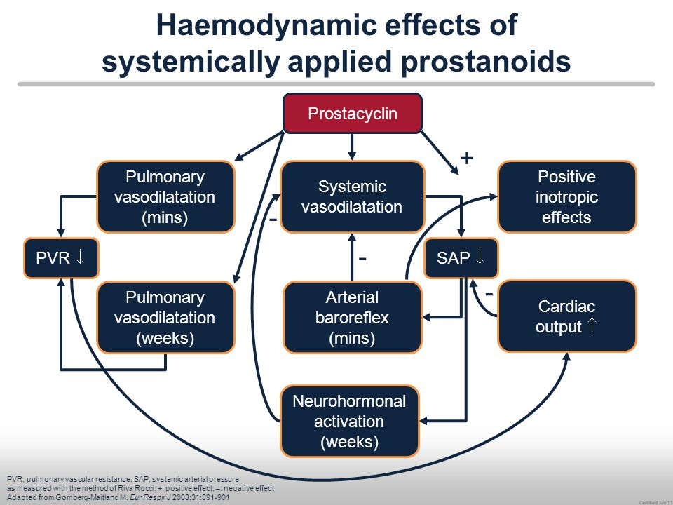 Haemodynamic effects of systemically applied prostanoids PVR, pulmonary vascular resistance; SAP, systemic arterial pressure as measured with the meth