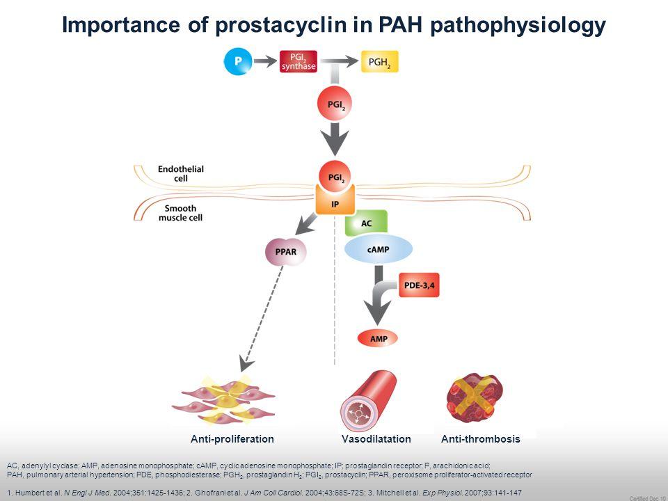 Importance of prostacyclin in PAH pathophysiology AC, adenylyl cyclase; AMP, adenosine monophosphate; cAMP, cyclic adenosine monophosphate; IP; prosta